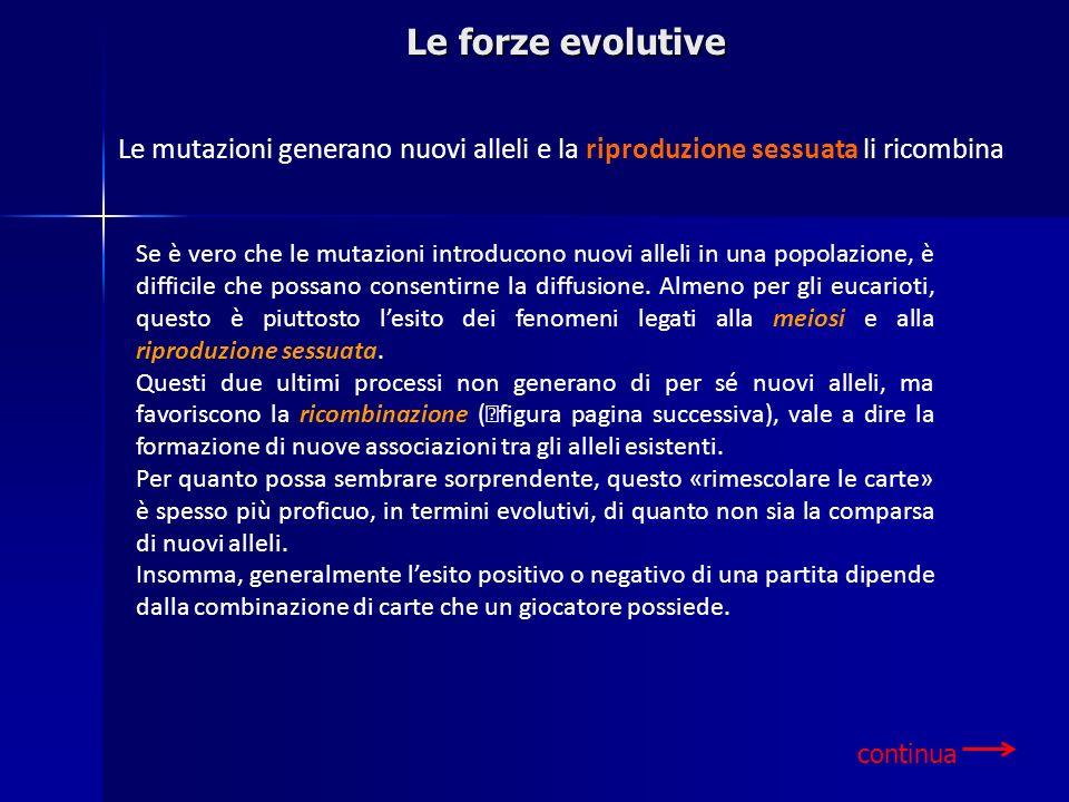 Le forze evolutive Se è vero che le mutazioni introducono nuovi alleli in una popolazione, è difficile che possano consentirne la diffusione. Almeno p
