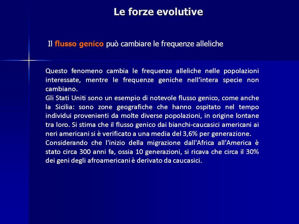 Le forze evolutive Il flusso genico può cambiare le frequenze alleliche Questo fenomeno cambia le frequenze alleliche nelle popolazioni interessate, m