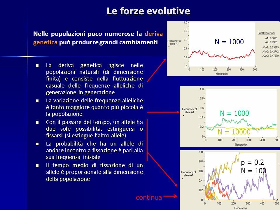 La deriva genetica agisce nelle popolazioni naturali (di dimensione finita) e consiste nella fluttuazione casuale delle frequenze alleliche di generaz