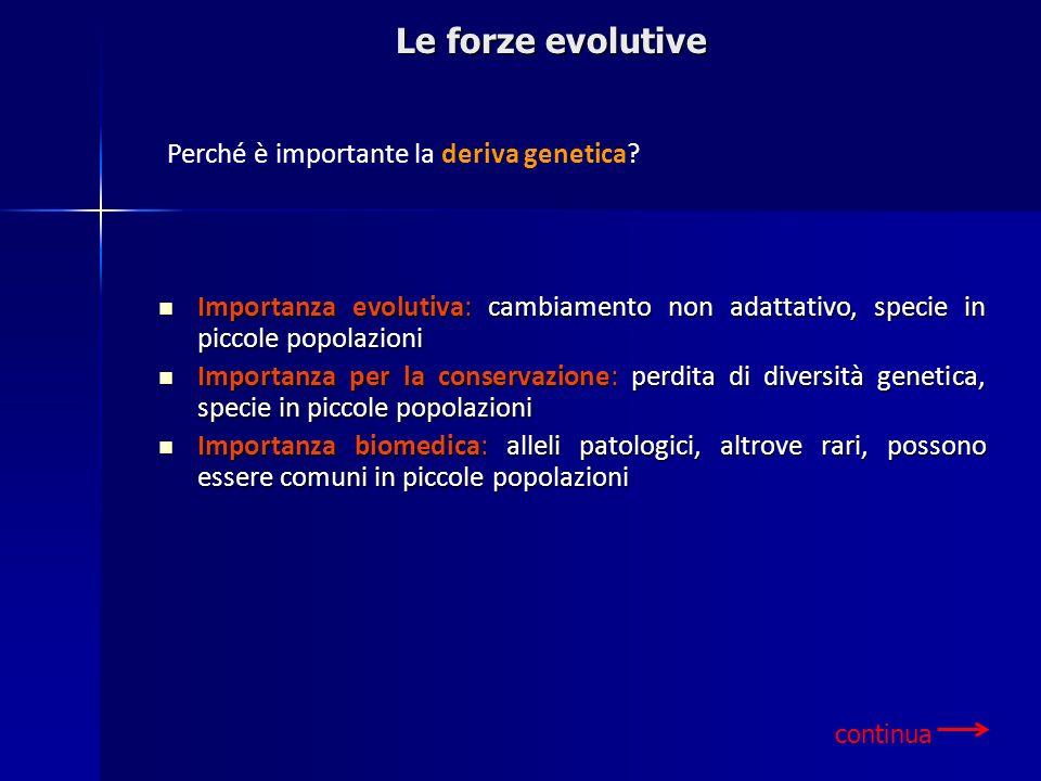 Le forze evolutive continua Perché è importante la deriva genetica? Importanza evolutiva: cambiamento non adattativo, specie in piccole popolazioni Im