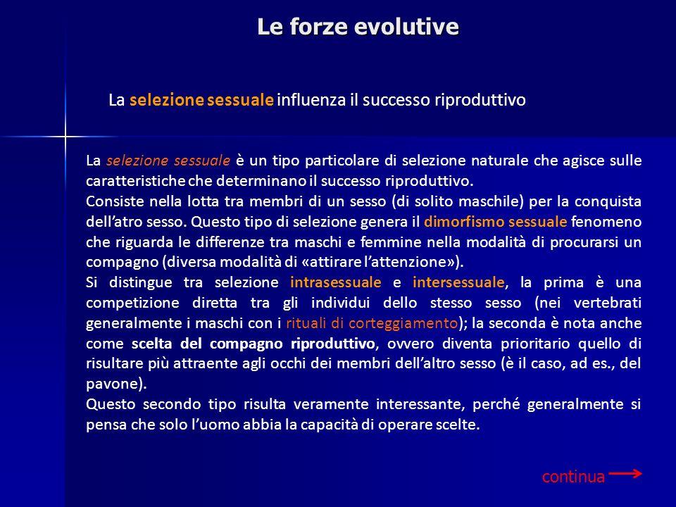 Le forze evolutive La selezione sessuale influenza il successo riproduttivo La selezione sessuale è un tipo particolare di selezione naturale che agis
