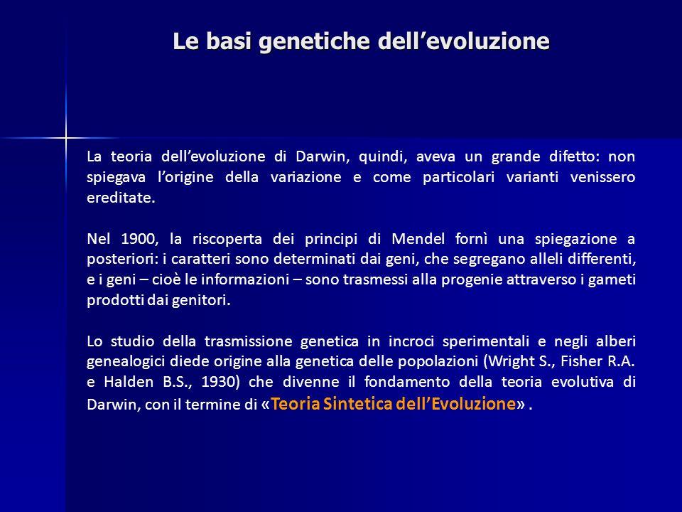 Le basi genetiche dellevoluzione La teoria dellevoluzione di Darwin, quindi, aveva un grande difetto: non spiegava lorigine della variazione e come pa