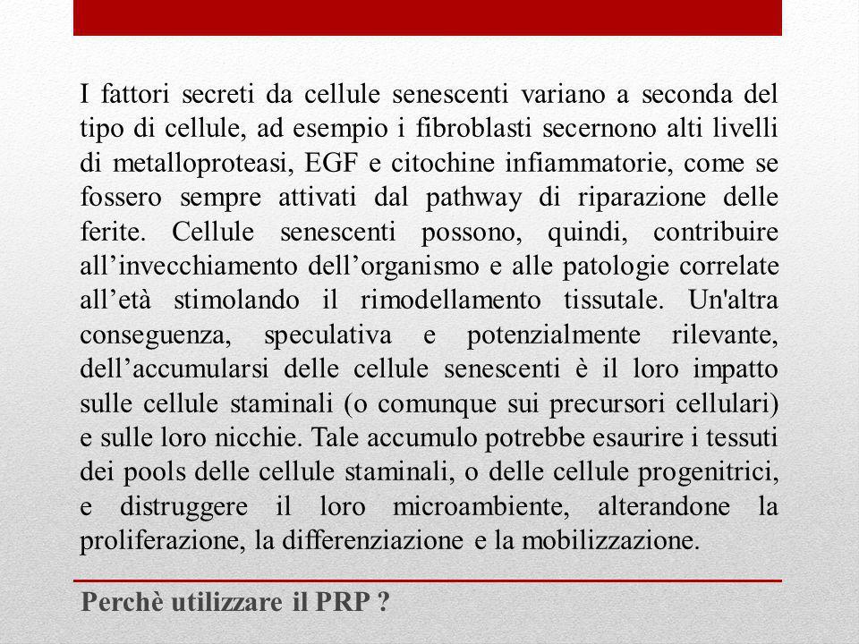 I fattori secreti da cellule senescenti variano a seconda del tipo di cellule, ad esempio i fibroblasti secernono alti livelli di metalloproteasi, EGF