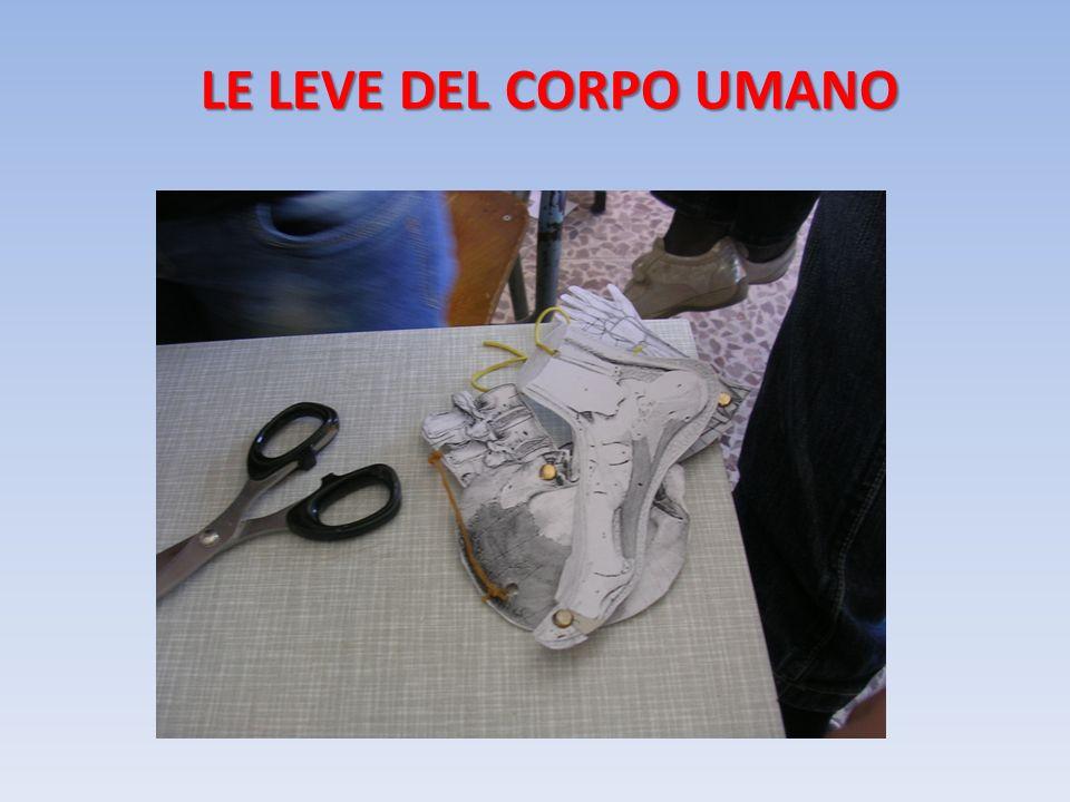LE LEVE DEL CORPO UMANO