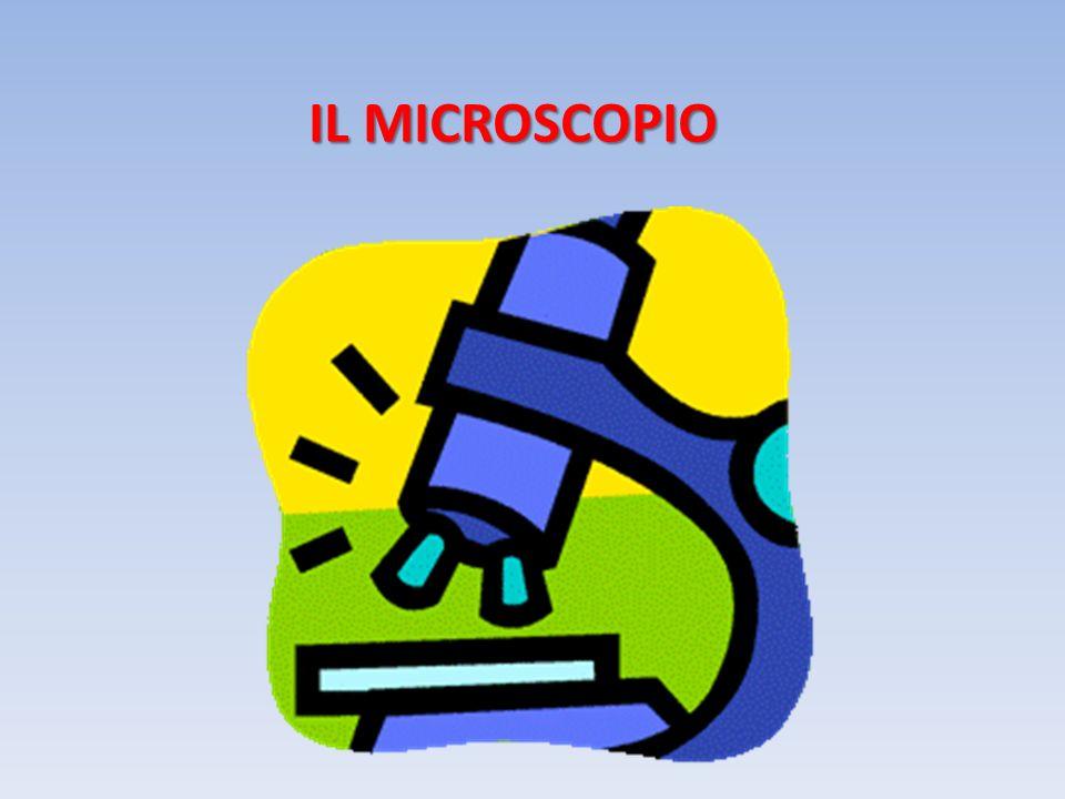 IL MICROSCOPIO