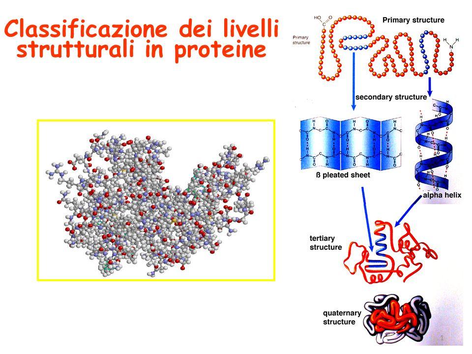 Classificazione dei livelli strutturali in proteine 1