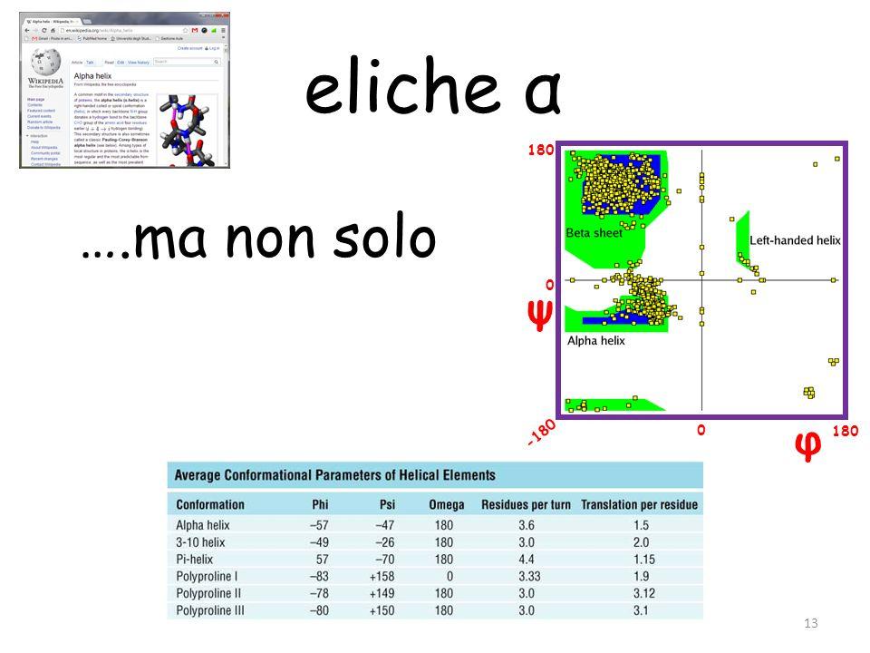 φ ψ 180 -180 0 0 ….ma non solo 13 eliche α