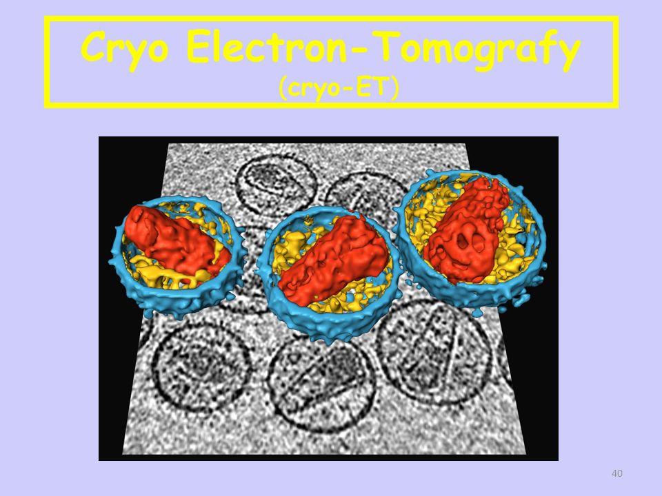 Cryo Electron-Tomografy (cryo-ET) 40