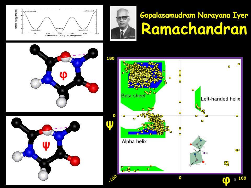 Gopalasamudram Narayana Iyer Ramachandran φ ψ 180 -180 0 0 φ ψ 8
