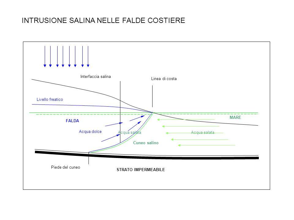 INTRUSIONE SALINA NELLE FALDE COSTIERE MARE Acqua salata Cuneo salino STRATO IMPERMEABILE Linea di costa Piede del cuneo Interfaccia salina Acqua dolc