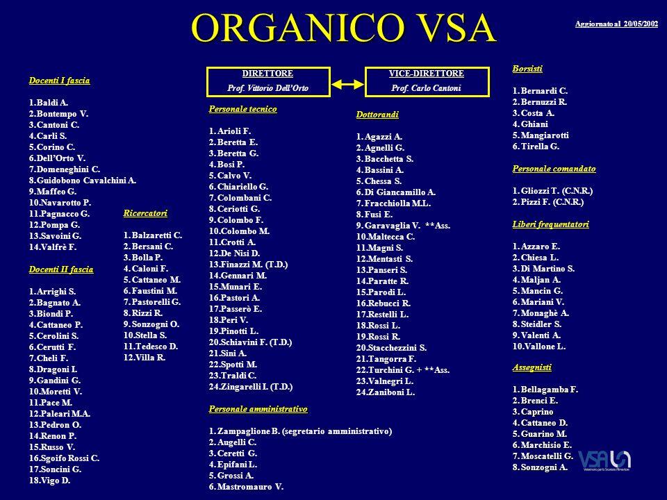 ORGANICO VSA Docenti I fascia 1.Baldi A. 2.Bontempo V.