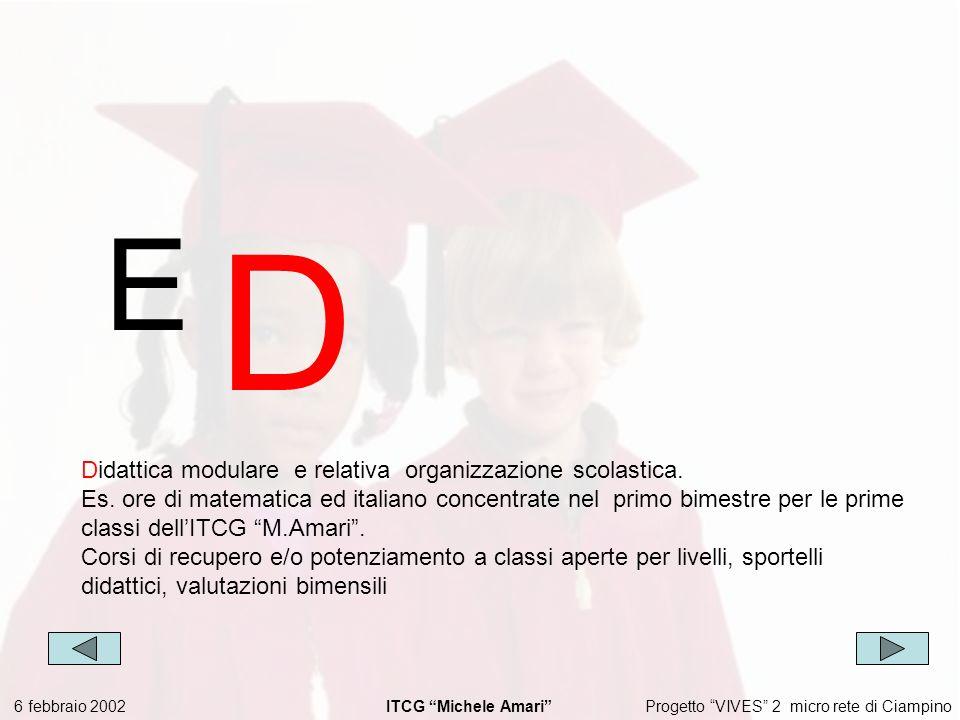 Progetto VIVES 2 micro rete di Ciampino 6 febbraio 2002 ITCG Michele Amari E D Didattica modulare e relativa organizzazione scolastica.