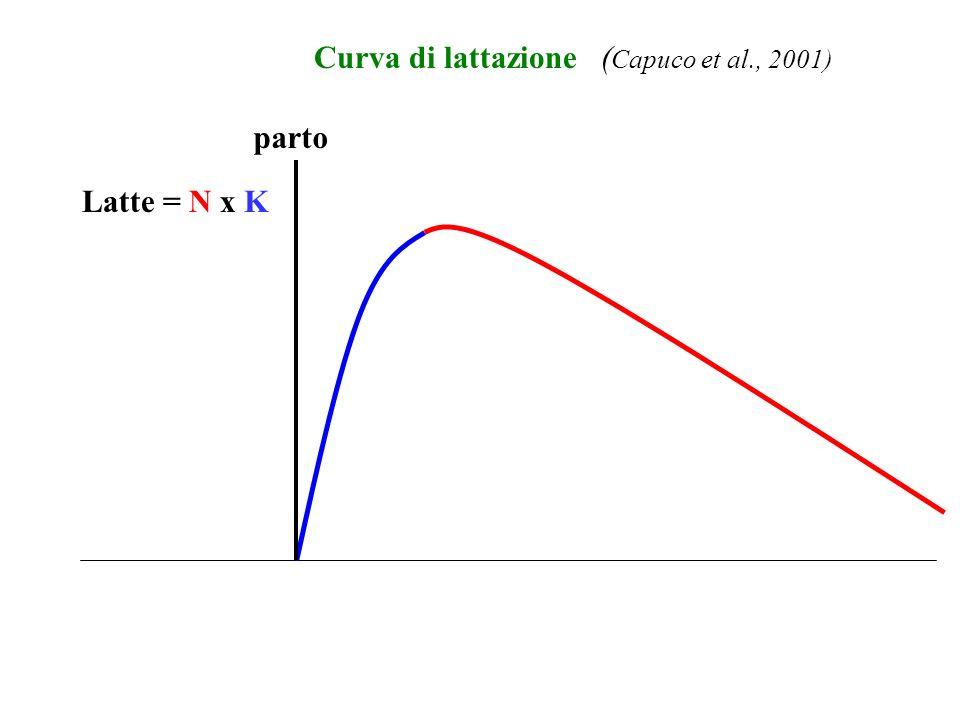 Latte = N x K ( Capuco et al., 2001) parto Curva di lattazione