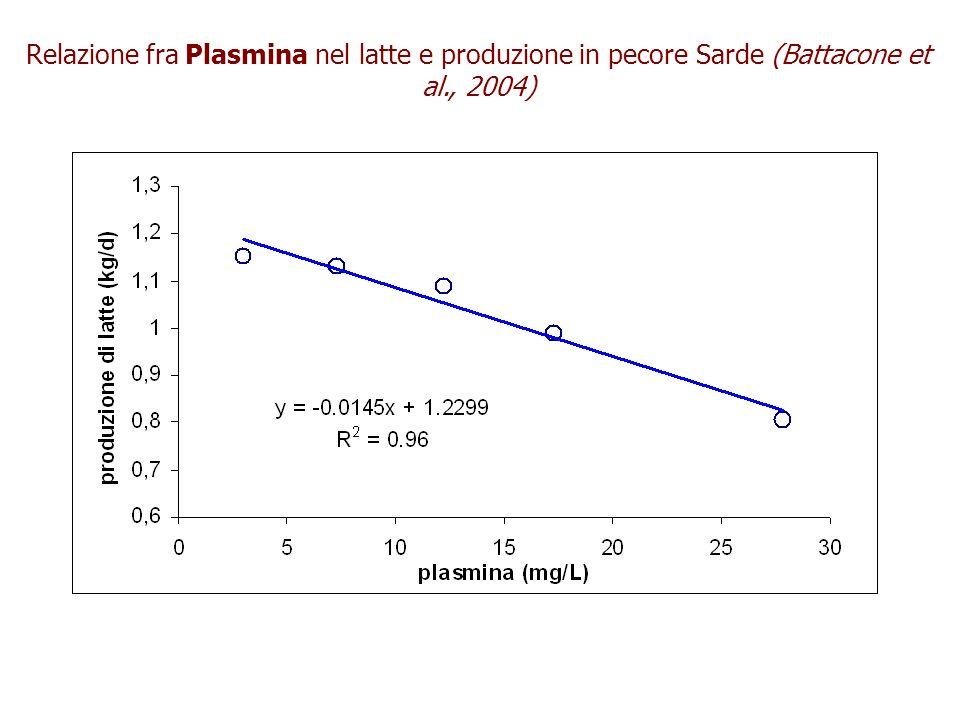 Relazione fra Plasmina nel latte e produzione in pecore Sarde (Battacone et al., 2004)