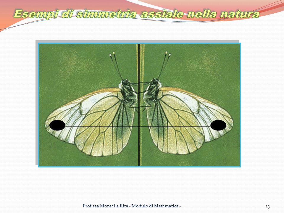 23Prof.ssa Montella Rita - Modulo di Matematica -