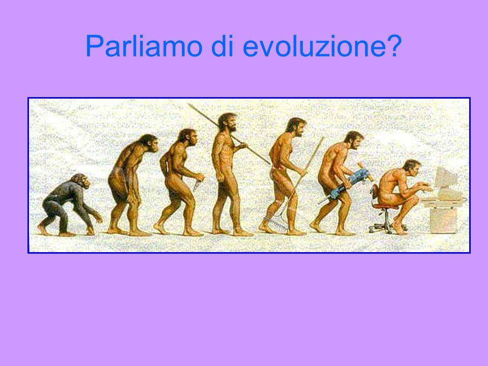 Parliamo di evoluzione?