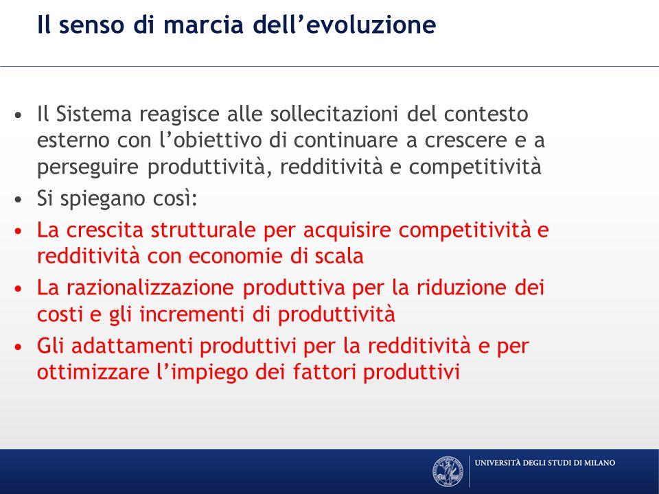 Il senso di marcia dellevoluzione Il Sistema reagisce alle sollecitazioni del contesto esterno con lobiettivo di continuare a crescere e a perseguire produttività, redditività e competitività Si spiegano così: La crescita strutturale per acquisire competitività e redditività con economie di scala La razionalizzazione produttiva per la riduzione dei costi e gli incrementi di produttività Gli adattamenti produttivi per la redditività e per ottimizzare limpiego dei fattori produttivi