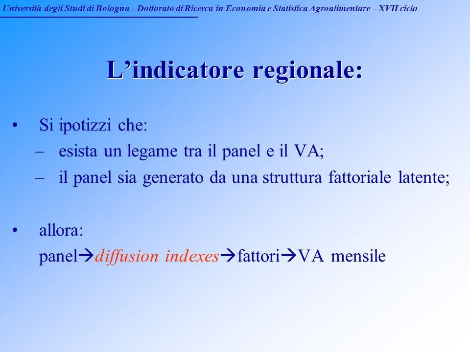 Università degli Studi di Bologna – Dottorato di Ricerca in Economia e Statistica Agroalimentare – XVII ciclo Lindicatore regionale: Si ipotizzi che: