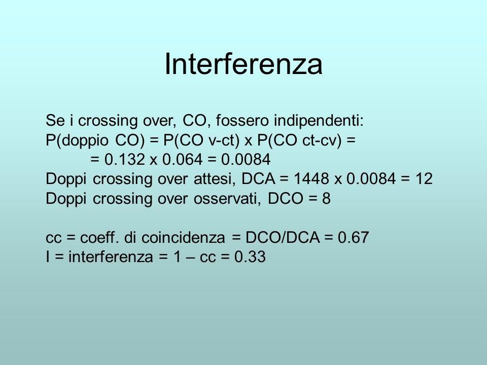 Interferenza Se i crossing over, CO, fossero indipendenti: P(doppio CO) = P(CO v-ct) x P(CO ct-cv) = = 0.132 x 0.064 = 0.0084 Doppi crossing over atte