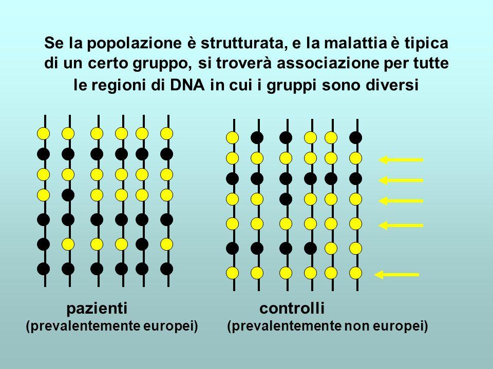 Se la popolazione è strutturata, e la malattia è tipica di un certo gruppo, si troverà associazione per tutte le regioni di DNA in cui i gruppi sono d