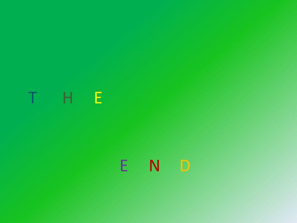 T H E END