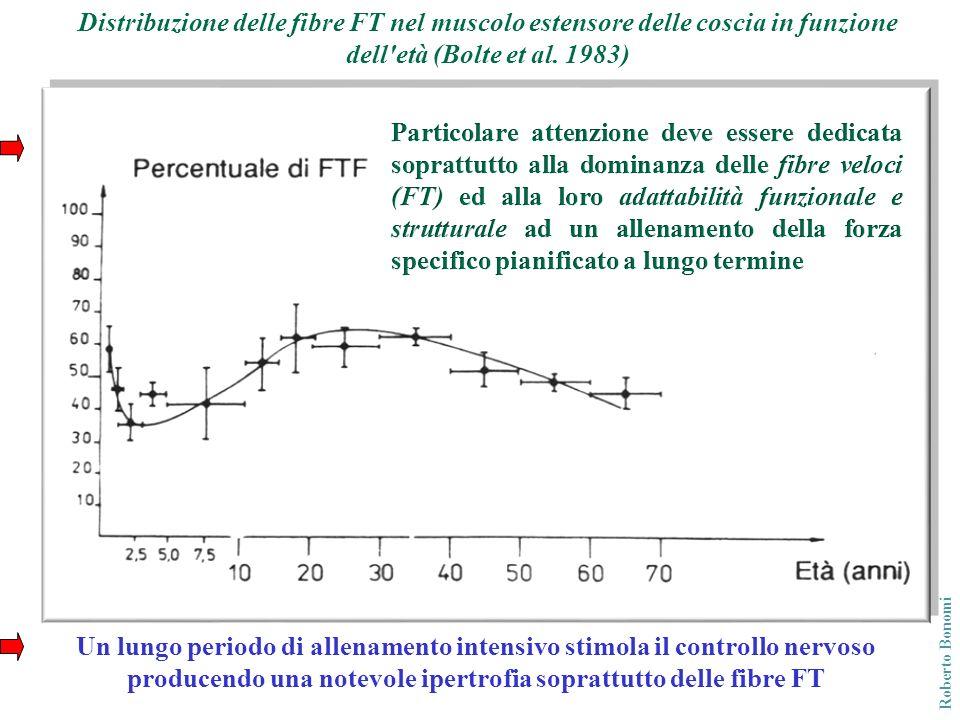 Roberto Bonomi Un lungo periodo di allenamento intensivo stimola il controllo nervoso producendo una notevole ipertrofia soprattutto delle fibre FT Di