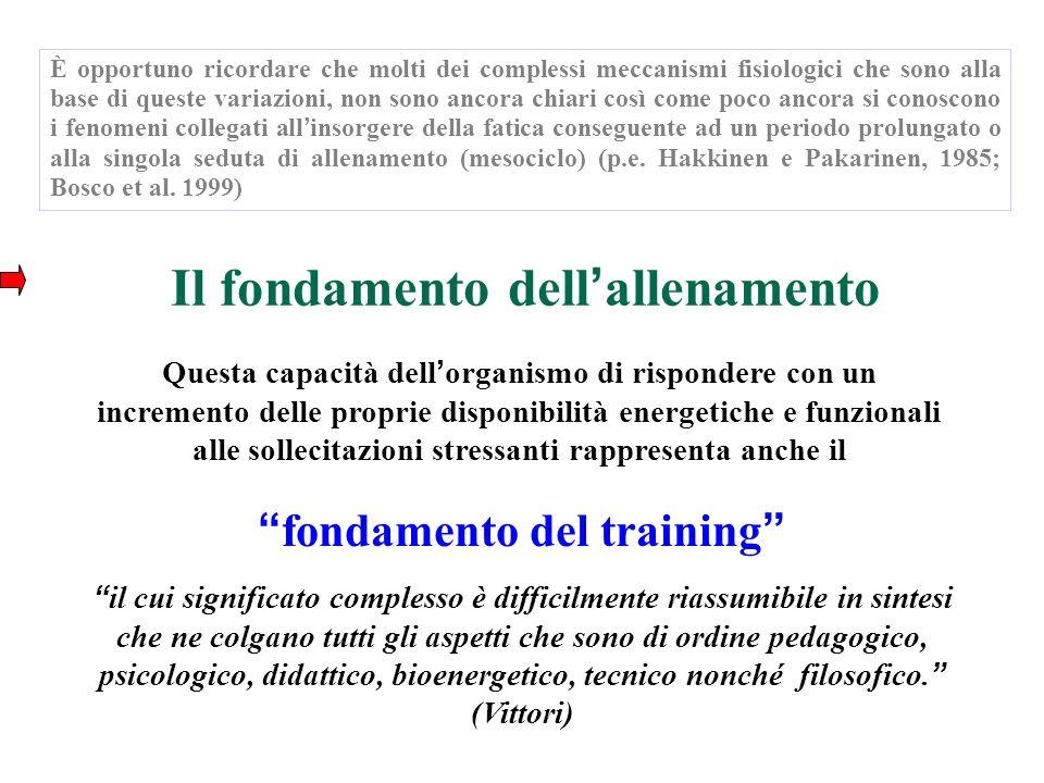 Il fondamento dell allenamento Questa capacità dell organismo di rispondere con un incremento delle proprie disponibilità energetiche e funzionali all