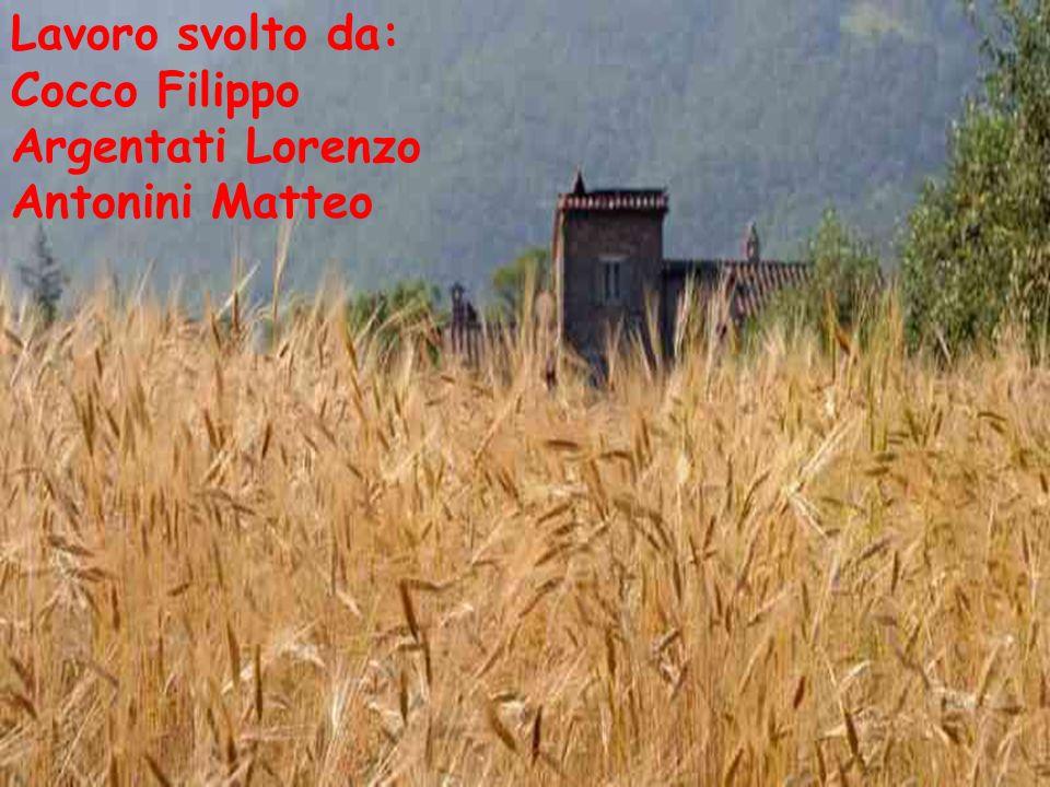 Lavoro svolto da: Cocco Filippo Argentati Lorenzo Antonini Matteo