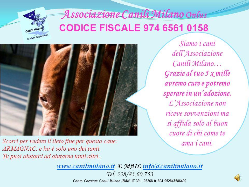 www.canilimilano.it E-MAIL info@canilimilano.it Tel.