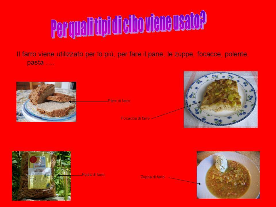Il farro viene utilizzato per lo più, per fare il pane, le zuppe, focacce, polente, pasta …. Pasta di farro Zuppa di farro Pane di farro Focaccia di f
