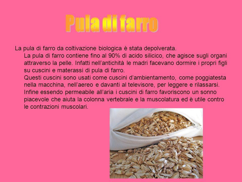 La glumetta è ciascuna delle brattee di consistenza cartacea che avvolgono le cariossidi( i chicchi) del grano e di altre graminacee.