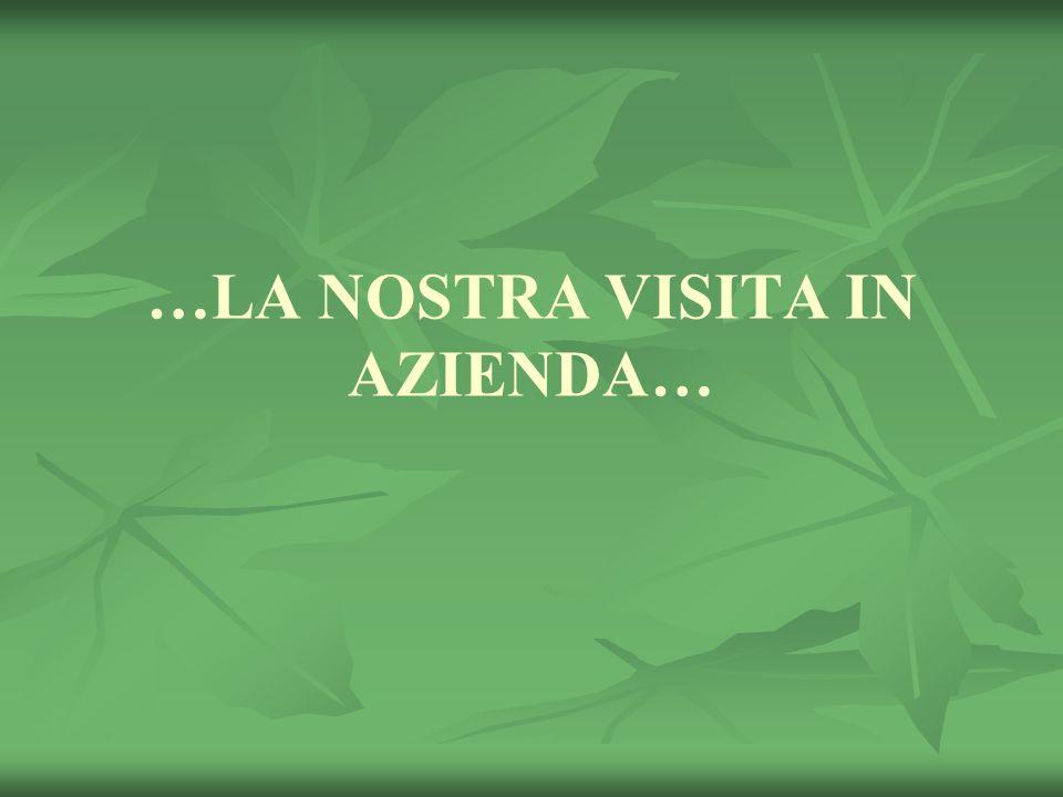 …LA NOSTRA VISITA IN AZIENDA…