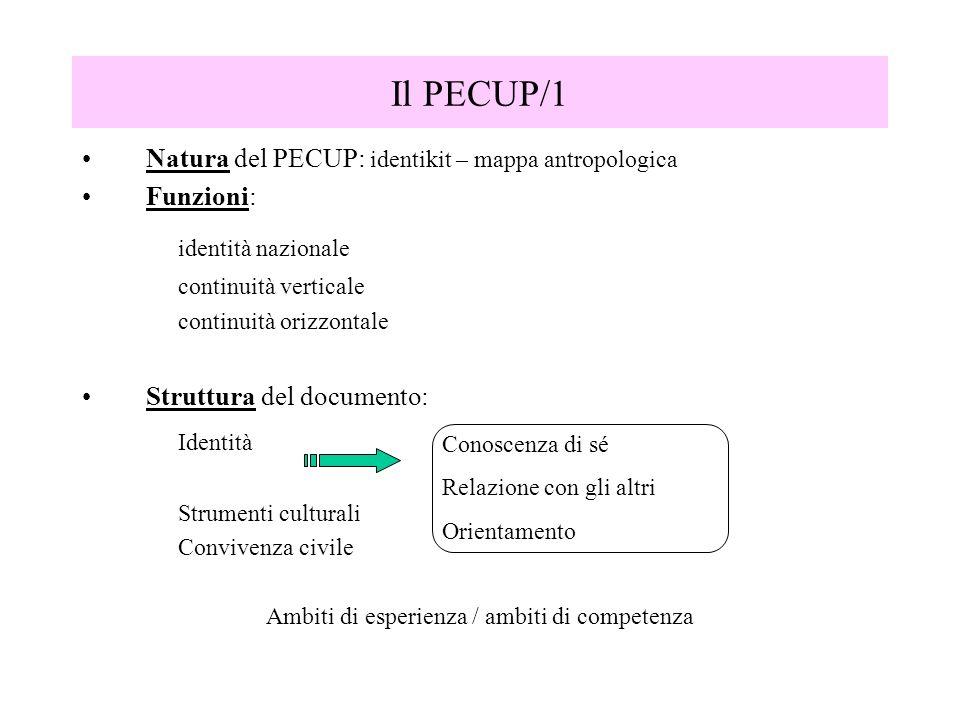 Il PECUP/1 Natura del PECUP: identikit – mappa antropologica Funzioni: identità nazionale continuità verticale continuità orizzontale Struttura del do