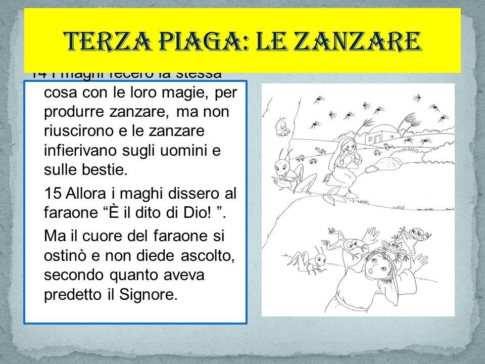 14 I maghi fecero la stessa cosa con le loro magie, per produrre zanzare, ma non riuscirono e le zanzare infierivano sugli uomini e sulle bestie.
