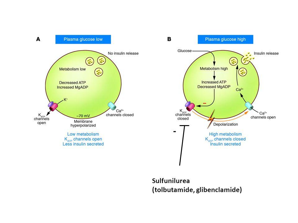 Sulfunilurea (tolbutamide, glibenclamide) -