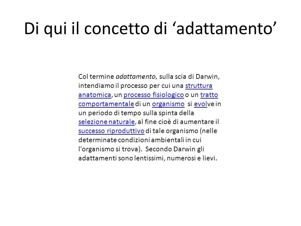 Darwin: i concetti-chiave Dalla Introduzione pp. 4-6