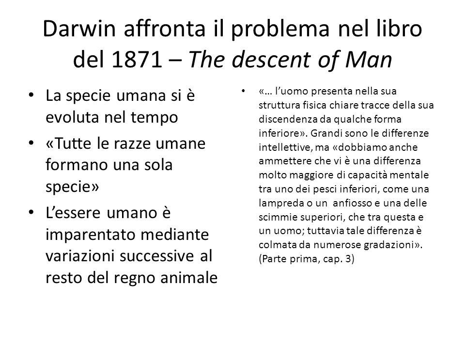 Darwin affronta il problema nel libro del 1871 – The descent of Man La specie umana si è evoluta nel tempo «Tutte le razze umane formano una sola spec