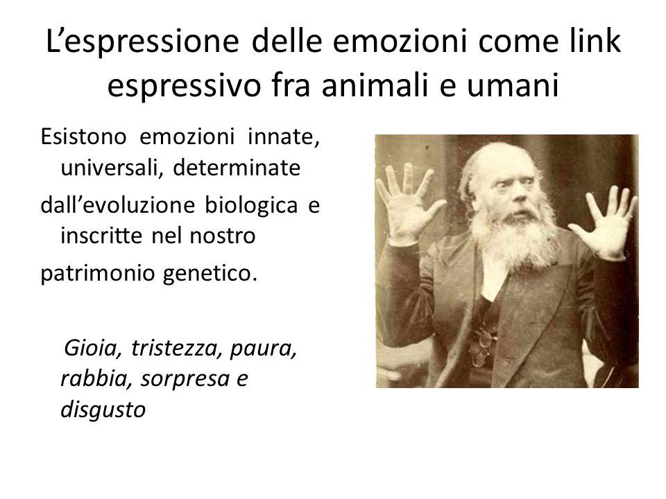 Lespressione delle emozioni come link espressivo fra animali e umani Esistono emozioni innate, universali, determinate dallevoluzione biologica e insc