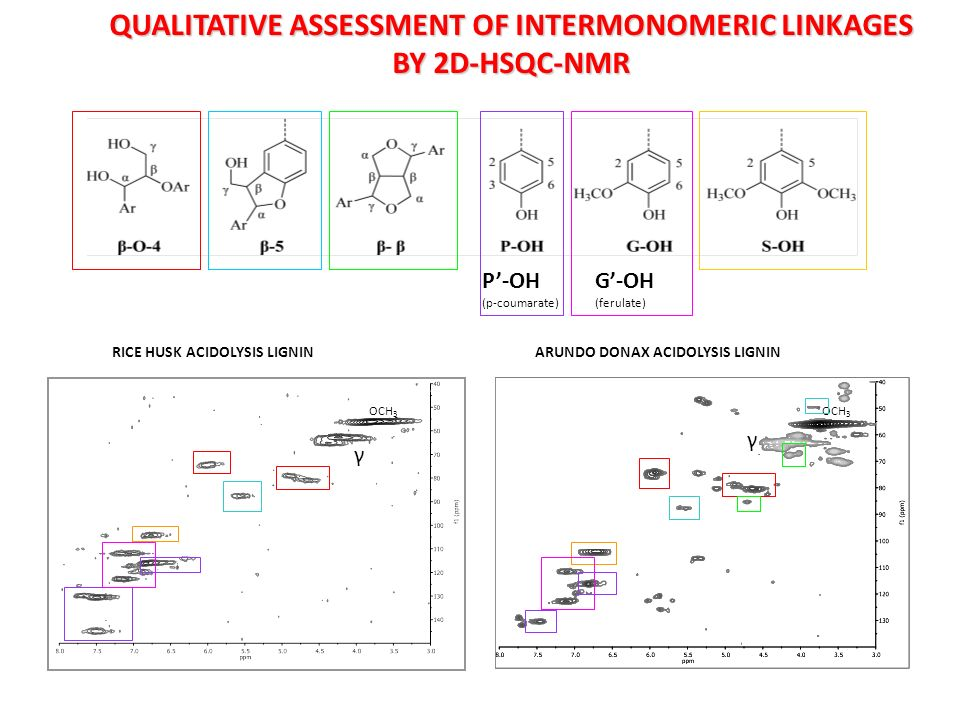 QUALITATIVE ASSESSMENT OF INTERMONOMERIC LINKAGES BY 2D-HSQC-NMR RICE HUSK ACIDOLYSIS LIGNINARUNDO DONAX ACIDOLYSIS LIGNIN γ γ OCH 3 P-OH (p-coumarate) G-OH (ferulate)