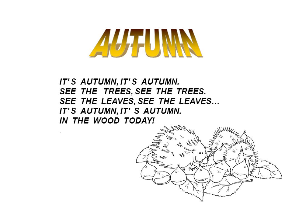 IT S AUTUMN, IT S AUTUMN. SEE THE TREES, SEE THE TREES. SEE THE LEAVES, SEE THE LEAVES… IT S AUTUMN, IT S AUTUMN. IN THE WOOD TODAY!.