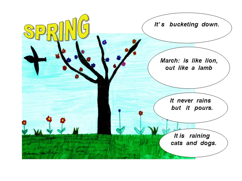 March: is like lion, out like a lamb It is raining cats and dogs. It never rains but it pours. It s bucketing down.