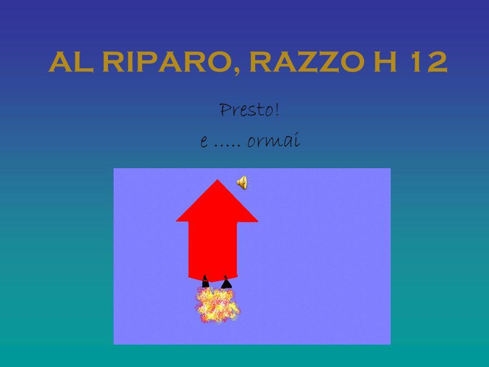 AL RIPARO, RAZZO H 12 Presto! e ….. ormai