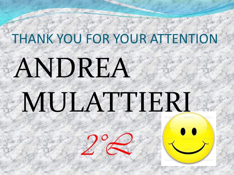 THANK YOU FOR YOUR ATTENTION ANDREA MULATTIERI 2°L