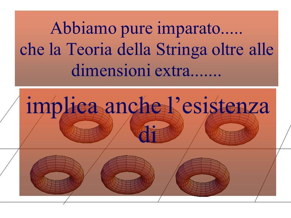 La Geometria delle dimensioni compatte... Le sei dimensioni compatte sono state scelte in vari modi interessanti Una possibilità è data dal toro T 6 o