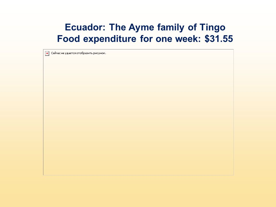 Ecuador: The Ayme family of Tingo Food expenditure for one week: $31.55