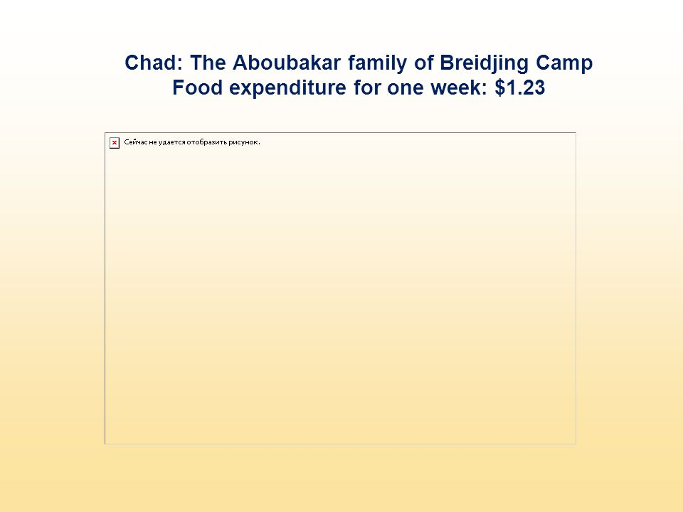 Chad: The Aboubakar family of Breidjing Camp Food expenditure for one week: $1.23