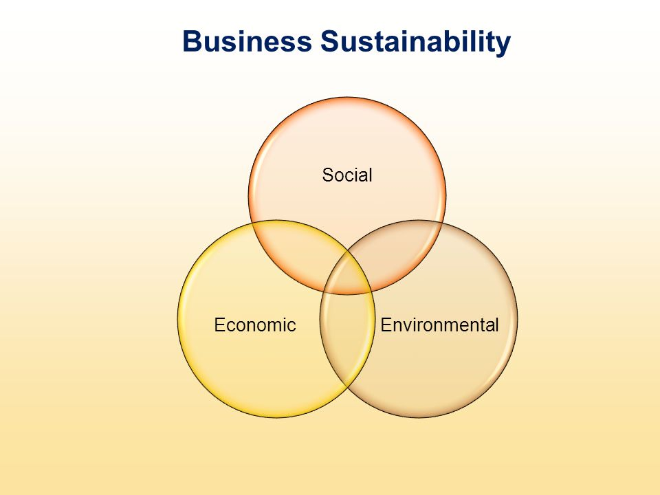 Business Sustainability Social EnvironmentalEconomic