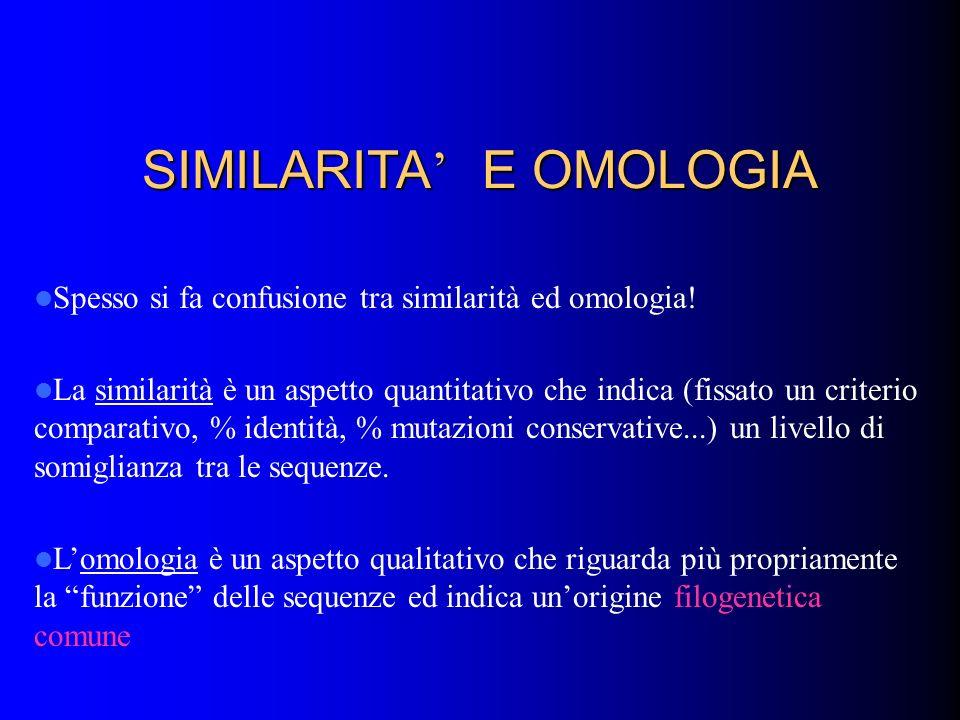 SIMILARITA E OMOLOGIA Spesso si fa confusione tra similarità ed omologia! La similarità è un aspetto quantitativo che indica (fissato un criterio comp