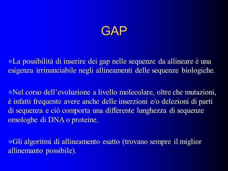 GAP La possibilità di inserire dei gap nelle sequenze da allineare è una esigenza irrinunciabile negli allineamenti delle sequenze biologiche. Nel cor