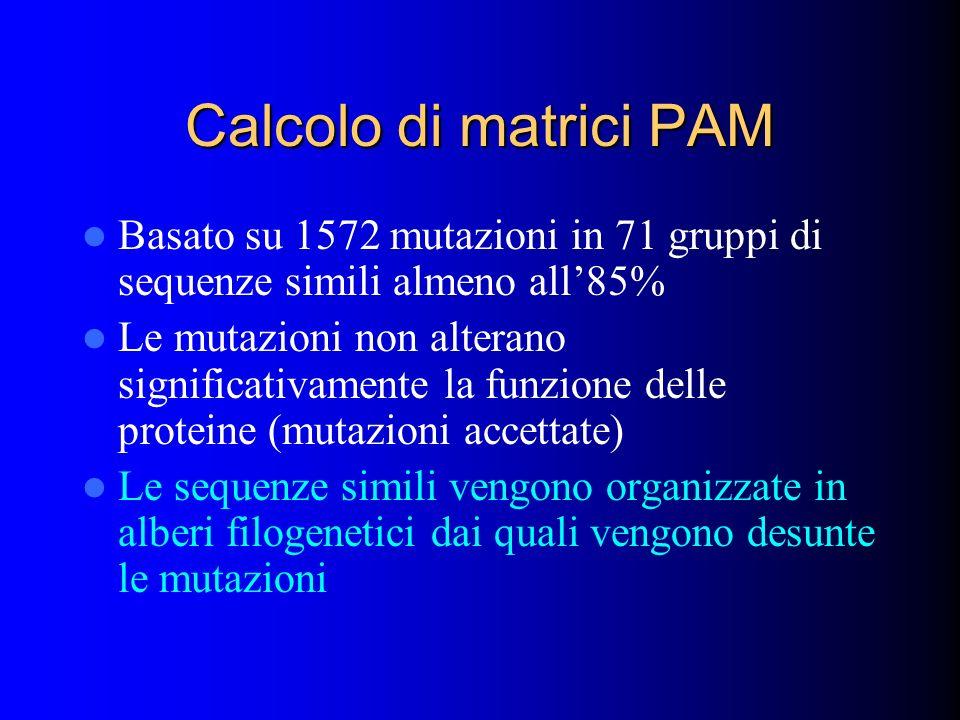 Calcolo di matrici PAM Basato su 1572 mutazioni in 71 gruppi di sequenze simili almeno all85% Le mutazioni non alterano significativamente la funzione